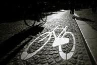 bicicarril