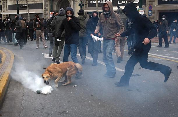 Loukanikos intentando coger un bote de humo para devolverselo a patadas a la policía. Atenas 2011.